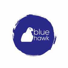 Notandalýsing Blue Hawk