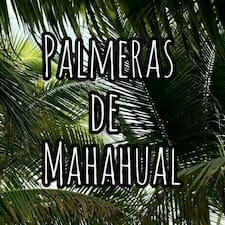 Palmeras De Mahahual - Uživatelský profil