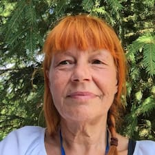 Ilse Brukerprofil