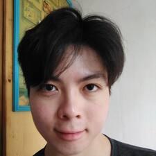 KokPong User Profile