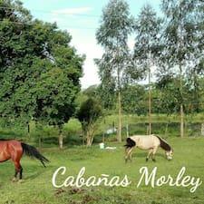 Cabañas felhasználói profilja