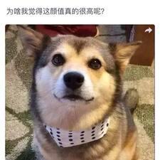 Nutzerprofil von 云锋
