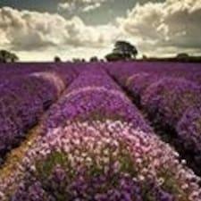 โพรไฟล์ผู้ใช้ Lavender