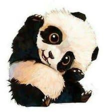 Panda Brugerprofil