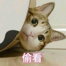 Nutzerprofil von MengYao