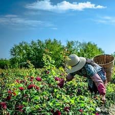 小兵~大理花伴一生玫瑰庄园