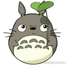 Användarprofil för Totoro