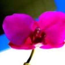 Nutzerprofil von Fleur