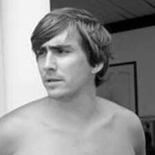 Wilfried felhasználói profilja
