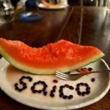 Saico felhasználói profilja