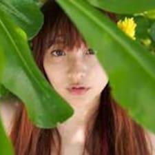 楊 Yang User Profile