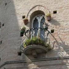 Niccolò User Profile