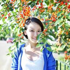 Perfil de usuario de Yinghua