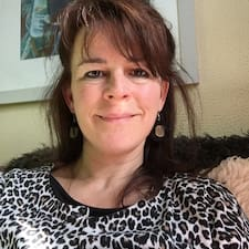 Lucy Anne User Profile
