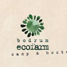 Профиль пользователя Bodrum