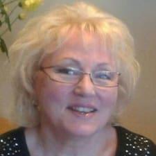 Shirley的用户个人资料