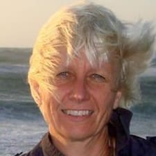 Dorthe Børsting User Profile