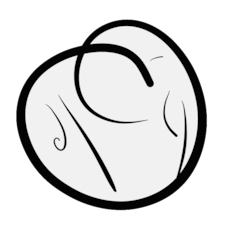 S User Profile