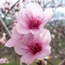Peach User Profile
