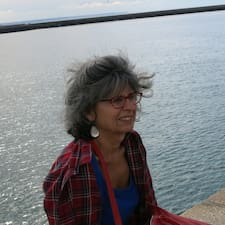 Boulzaguet User Profile
