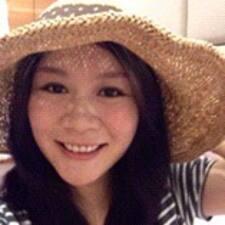 Ai Ying User Profile