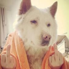 Perfil de usuario de 是一只奔跑的猎犬