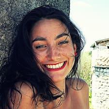 Mégane User Profile
