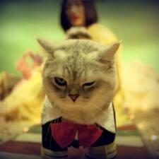 โพรไฟล์ผู้ใช้ 影猫
