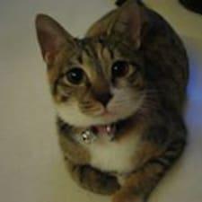 Profil utilisateur de Cat