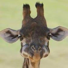 Giraffee è l'host.