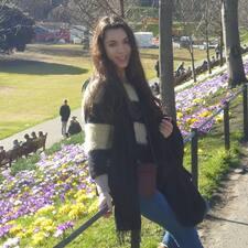 Profil Pengguna Violetta