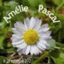 Nutzerprofil von Amé