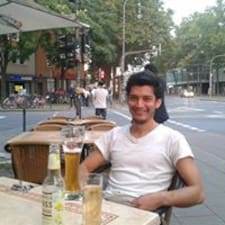 Aldo Armando User Profile