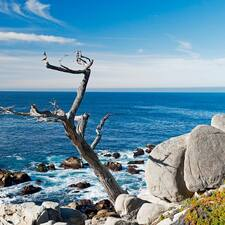 Carmel By The Sea User Profile