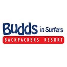 Budds In Surfers User Profile