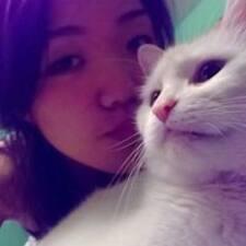 Chihiro felhasználói profilja
