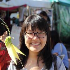 Shin Lin User Profile