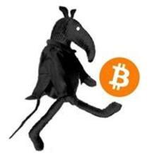 Perfil de usuario de Bitcoin Rat