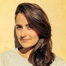 Ambar felhasználói profilja