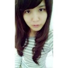 Profil korisnika Nical