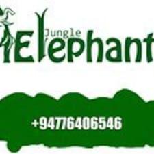 Perfil de usuario de Jungle Elephantt