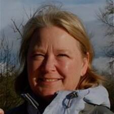 Glese User Profile