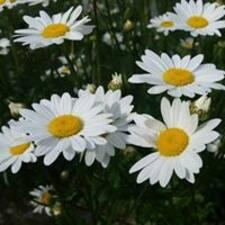 Nutzerprofil von Daisy