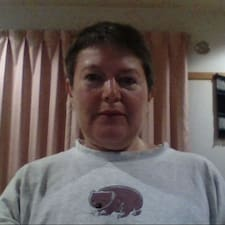 Vikki felhasználói profilja