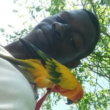 Hamatt User Profile