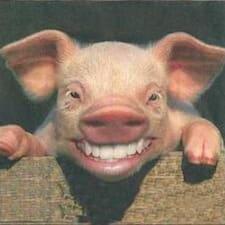 是一条特立独行的猪 es el anfitrión.