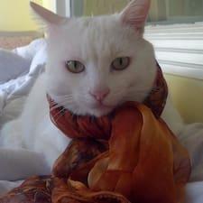 猫猫さんのプロフィール
