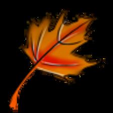 Sarada User Profile