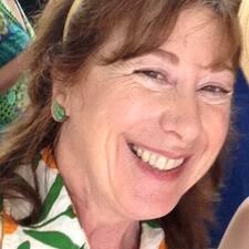 Notandalýsing Leslie
