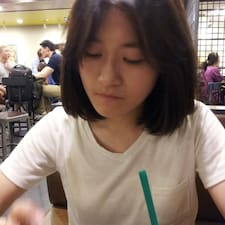 홍 User Profile